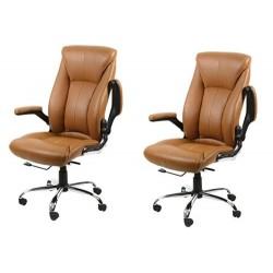 Set of 2 AVION Salon Chair...