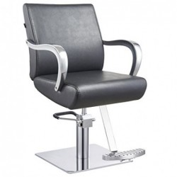 Beauty Salon Styling Chair...